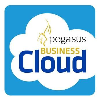 PegasusBusinessCloud